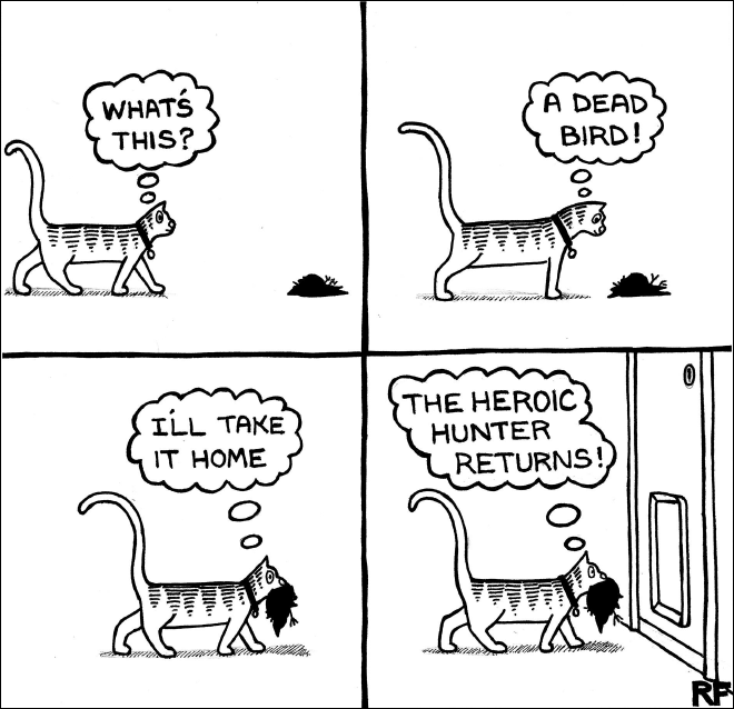 Funny Cartoons That All Cat Owners Will Understand