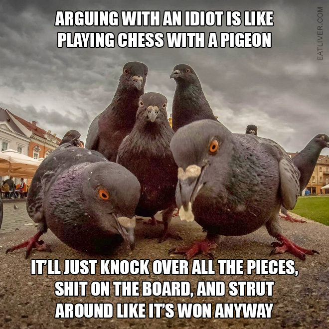 Arguing with an idiot is like playing chess with a pigeon. It'll just knock over all the pieces, shit on the board, and strut around like it's won anyway.