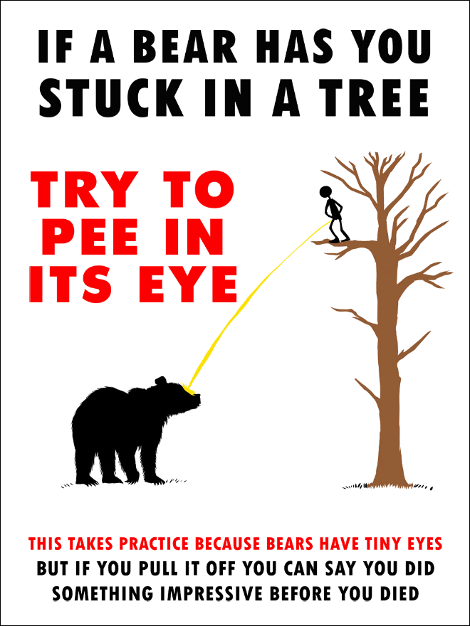 Try to pee in its eye. This takes practice because bears have tiny eyes but if you pull it off you can say you did something impressive before you died.