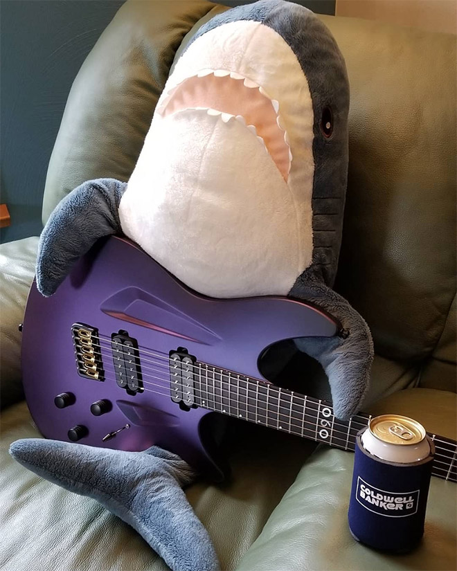 Shark playing a guitar.