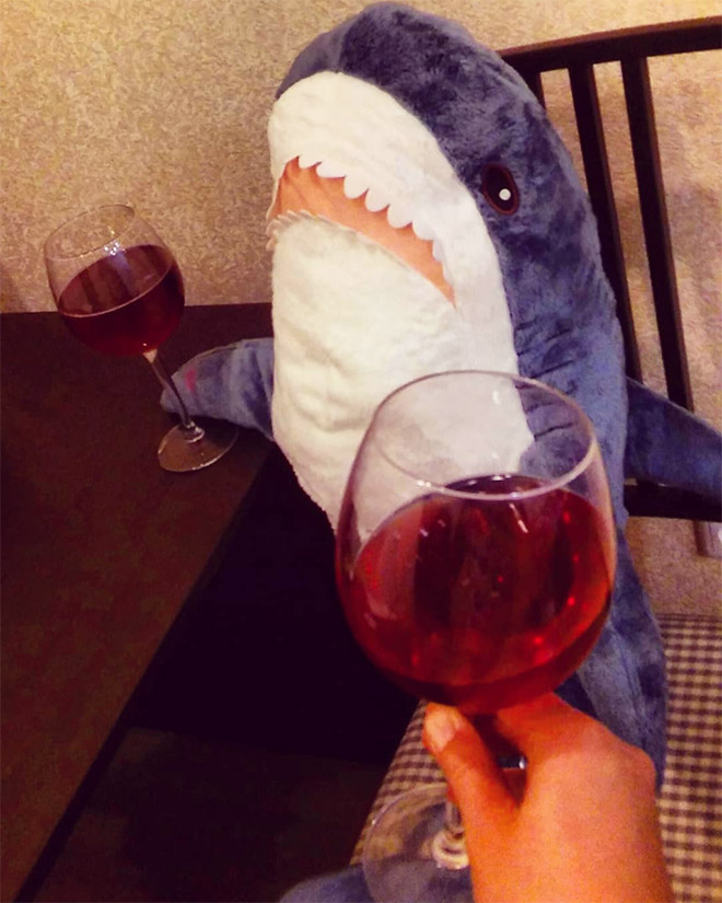 Romantic wine drinking with a shark.
