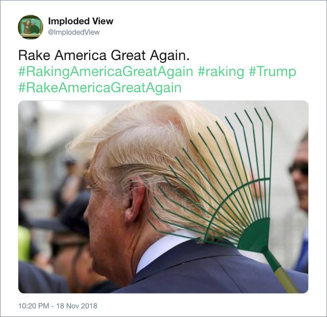 Rake America great again!