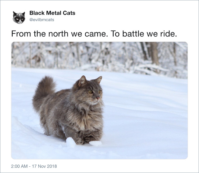 From the north we came. To battle we ride.