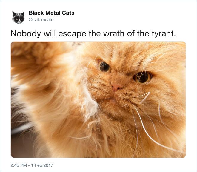 Nobody will escape! Nobody!