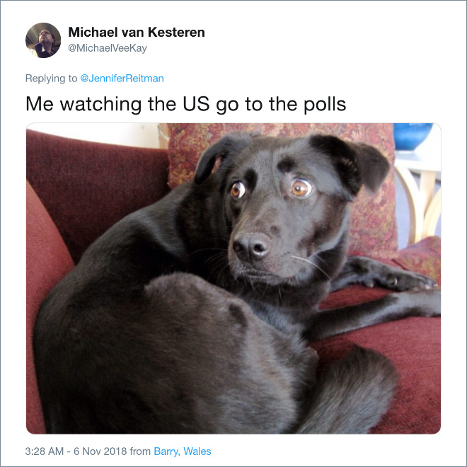 Me watching US go to the polls.