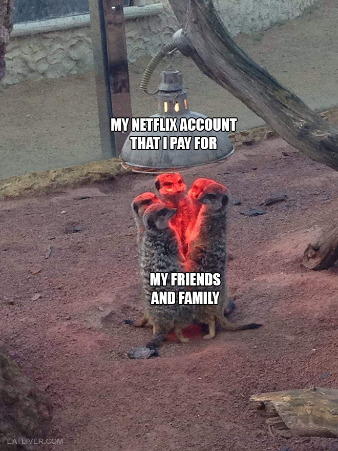 My Netflix account vs. my friends and family.