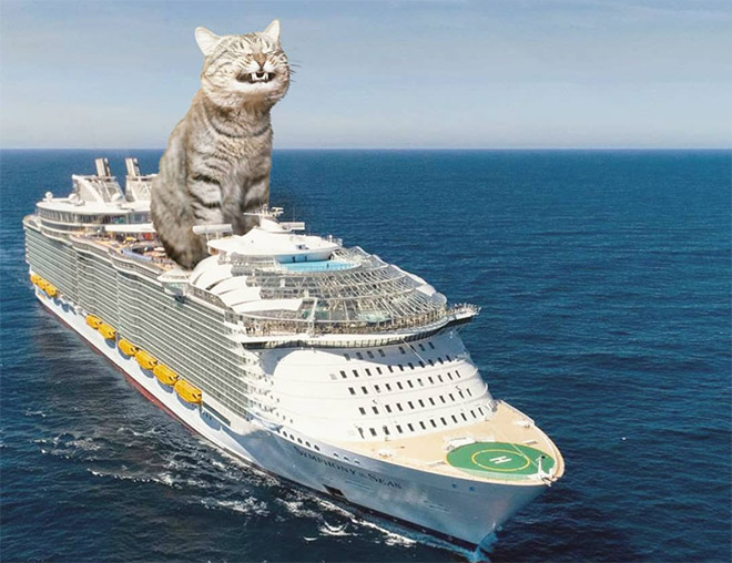 Godzilla cat vs. cruise ship.