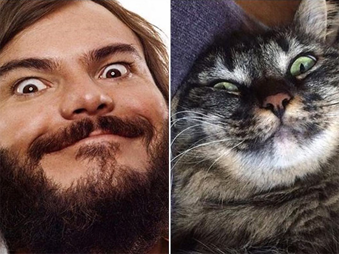 Jack Black and his double.