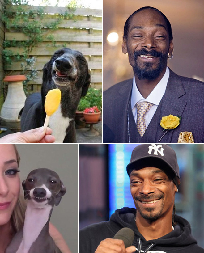 Snoop Dogg and his dog.