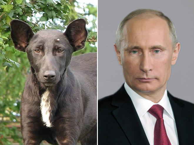 Putin and his double.