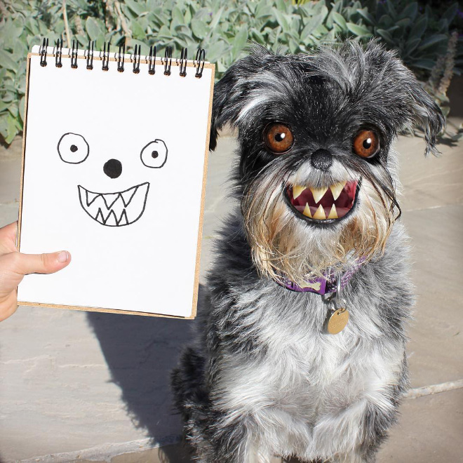 Dog doodle recreated as a real living thing.