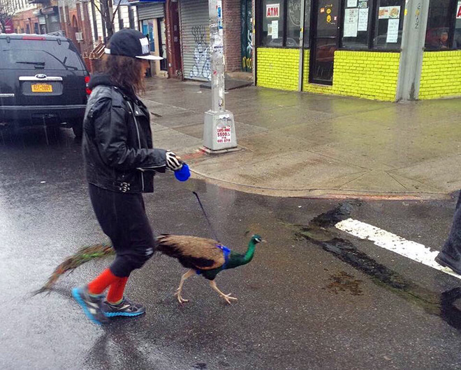 Hipster and her pet.