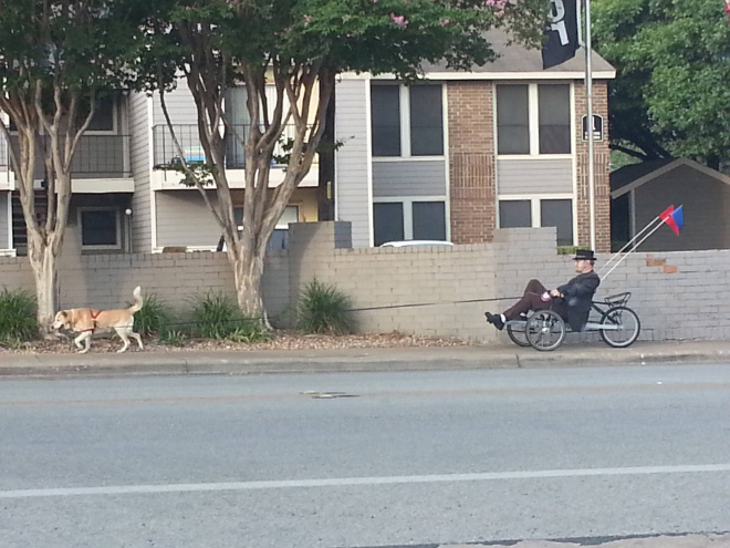 Hipster walking his dog.