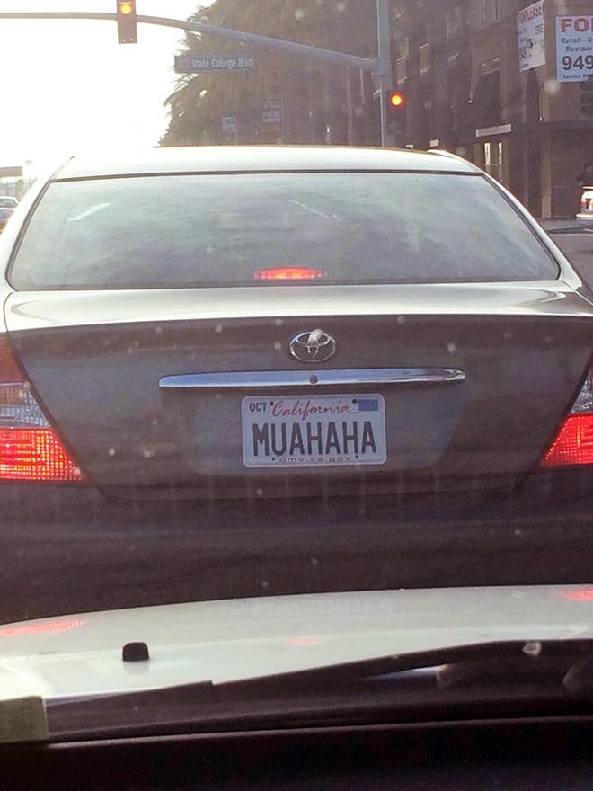 Brilliant licence plate.