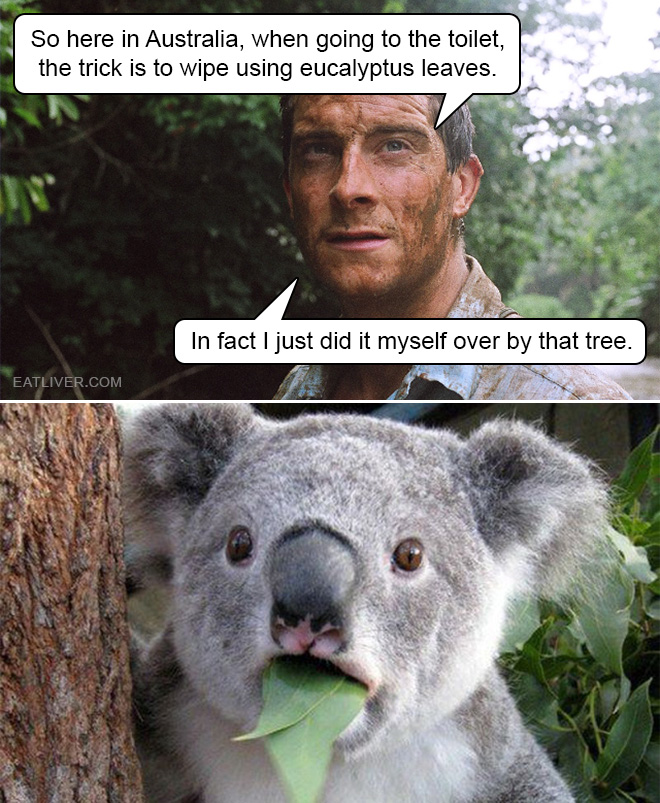 Survival tip from Bear Grylls.