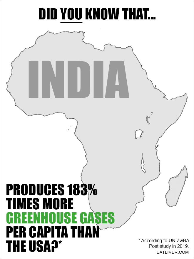 Take a look at how India is polluting our planet!