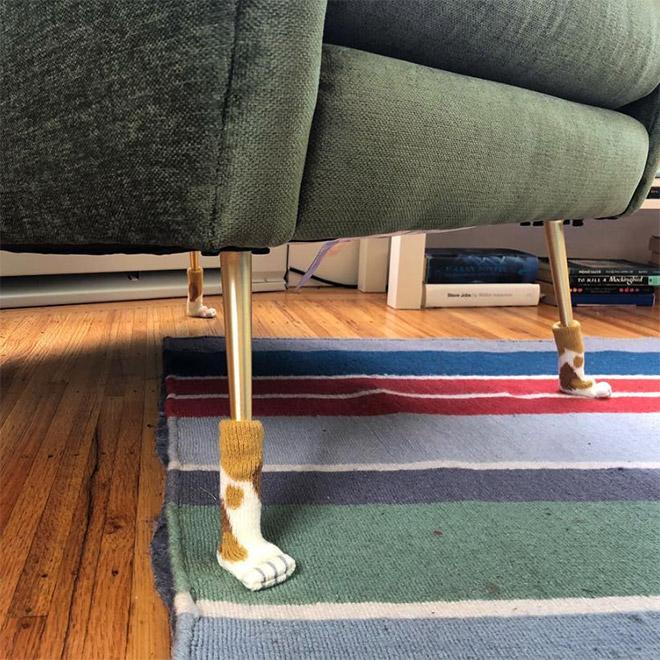 Cat paw chair socks.