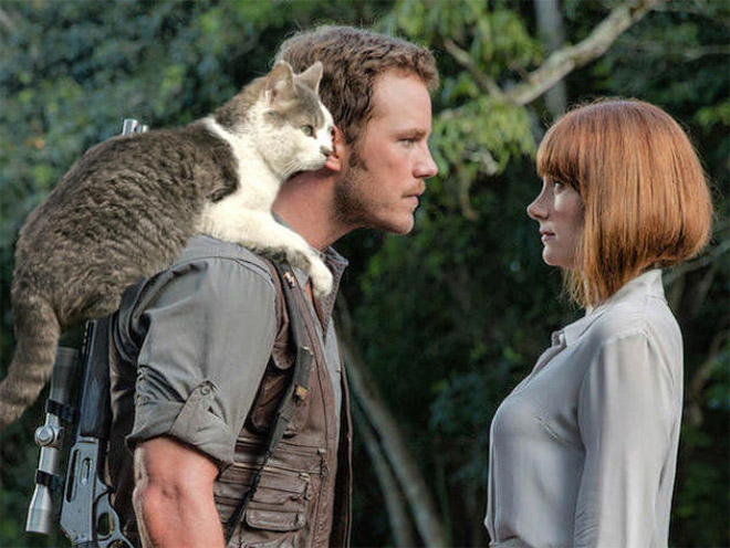 Jurassic Park improved by replacing dinosaurs with cats.
