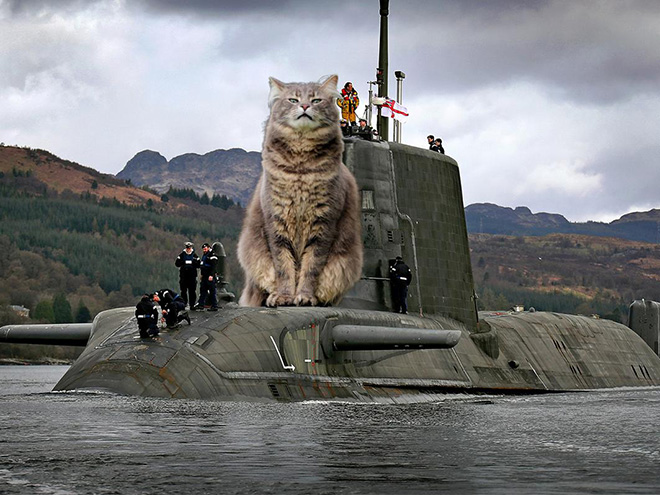 Huge cat photoshopped with military hardware for no reason at all.