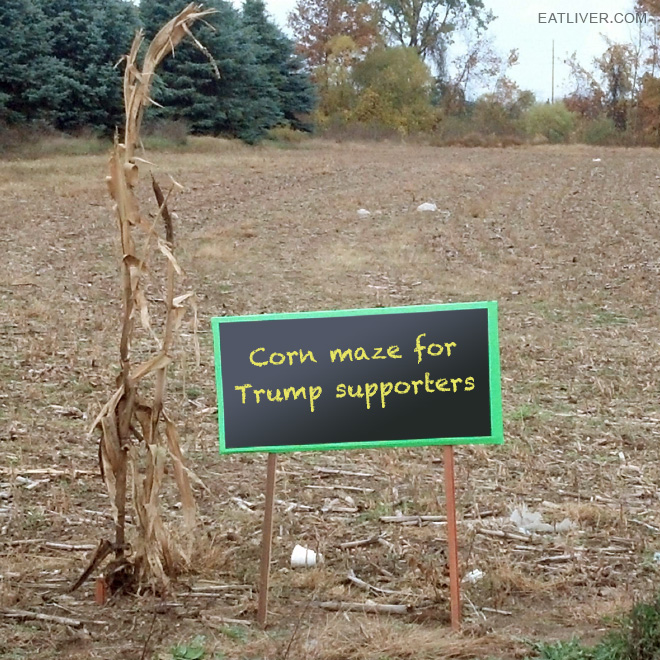 Corn maze for Trump supporters.