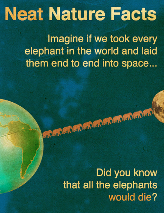 Did you know this amazing fact?