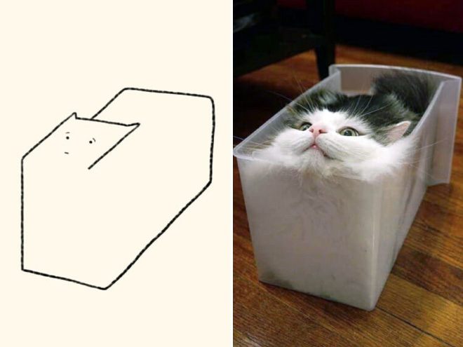 Very accurate drawing of a cat.