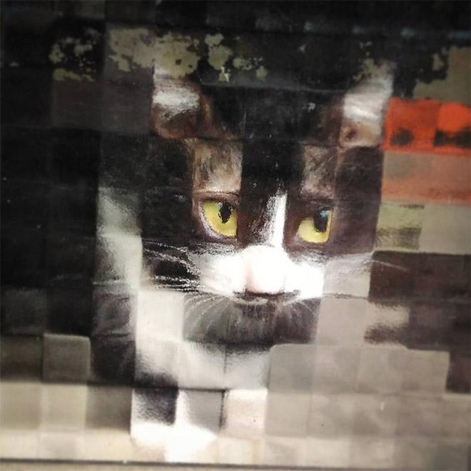 8-bit low resolution pixelated cat.
