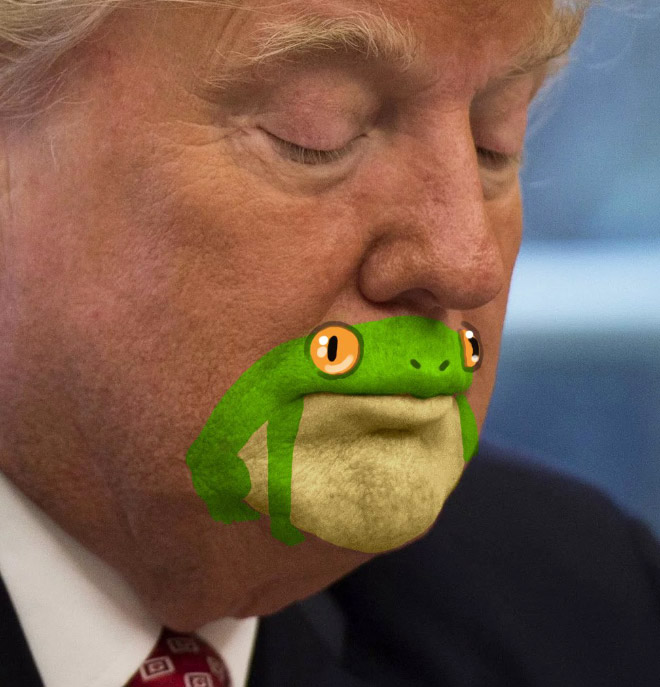 Have you noticed his chin looks like a frog?