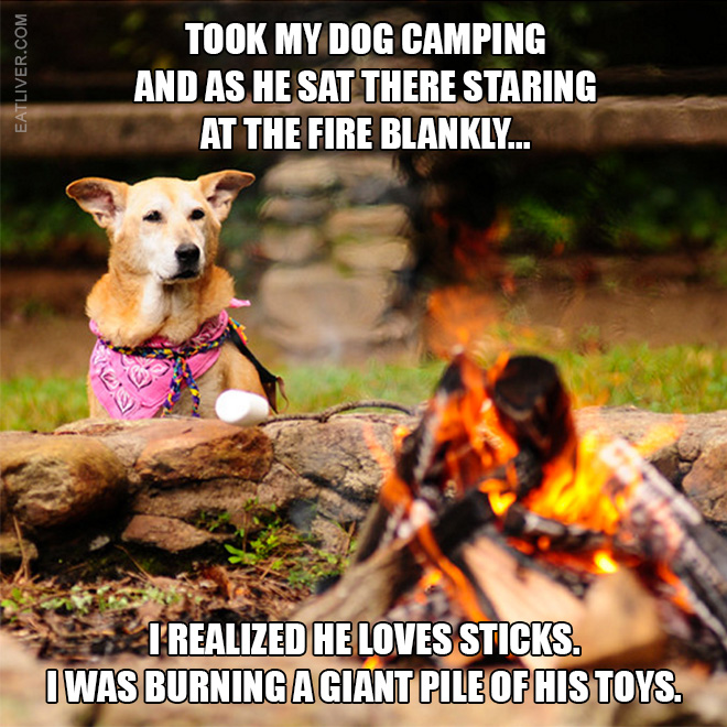 ...as he sat there staring at the fire blankly, I realized he loves sticks. I was burning a giant pile of his toys.