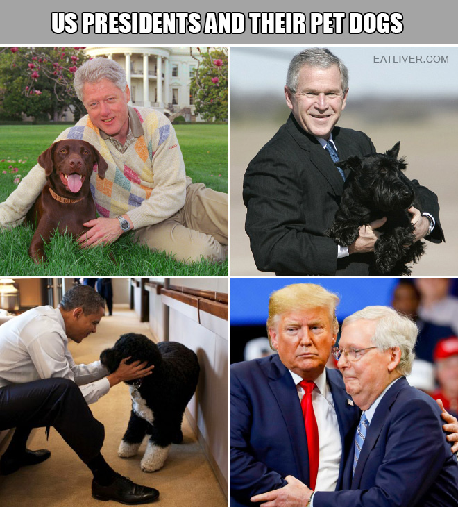 US presidents and their pet dogs.