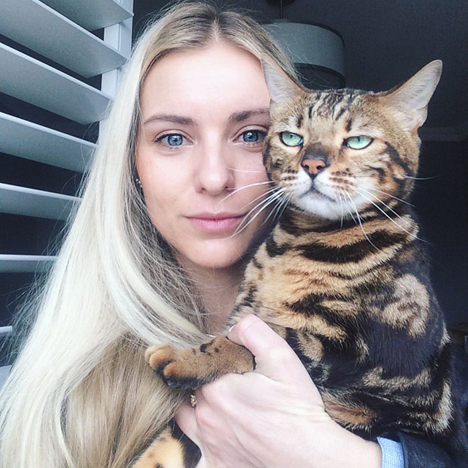 Not all cats like participating in selfies.