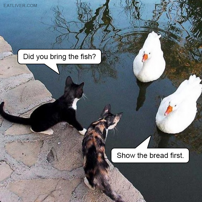 Show the bread first. Or no deal.