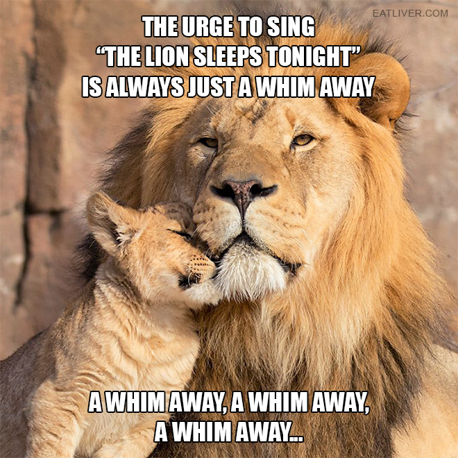 "The urge to sing ""The Lion Sleeps Tonight"" is always just a whim away... a whim away, a whim away, a whim away..."