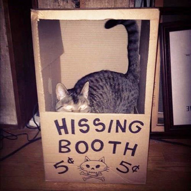 A perfect booth for this little monster.