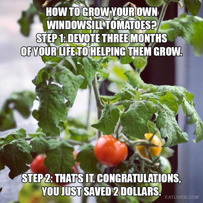 Step 1: devote three months of your life to helping them grow. Step 2: That's it. Congratulations, you just saved 2 dollars.