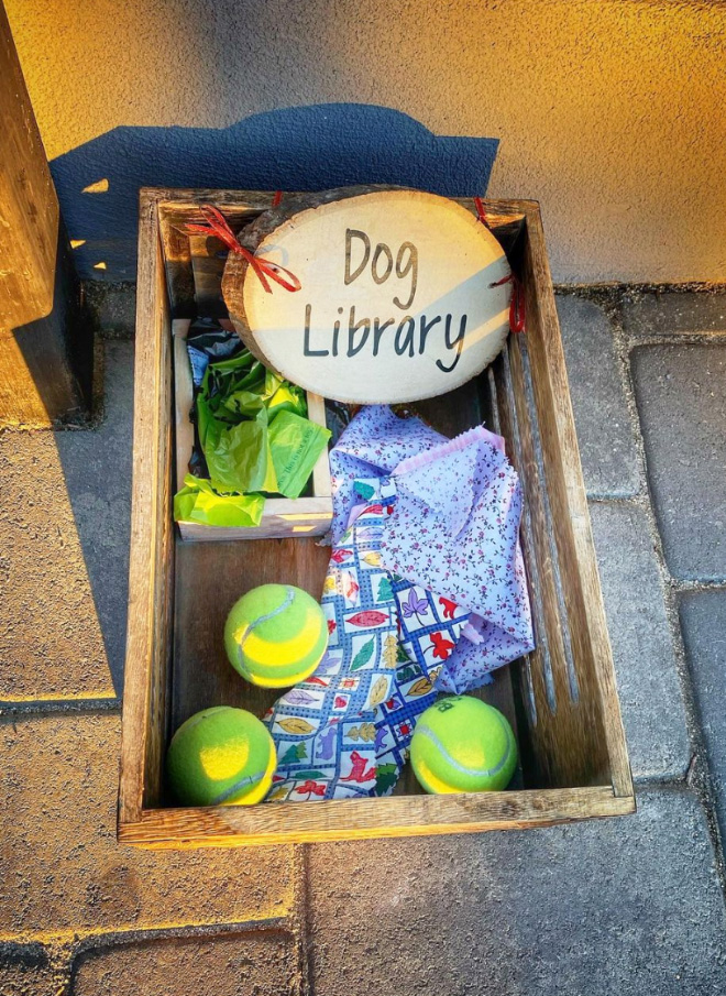 This is an excellent idea for dog owners!