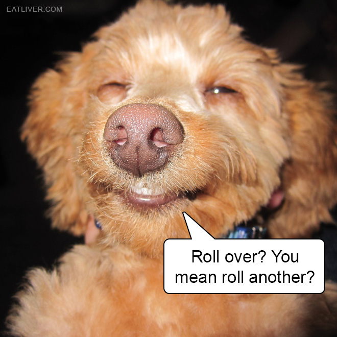 Roll over? You mean roll another?