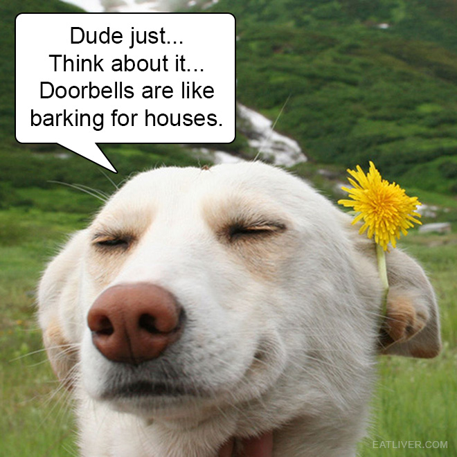 Dude just... Think about it... Doorbells are like barking for houses.
