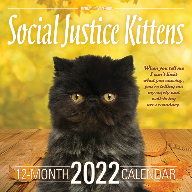 You know you want this calendar.